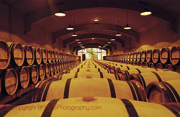 Oak barrel ageing and fermentation cellar, Chateau du Tertre