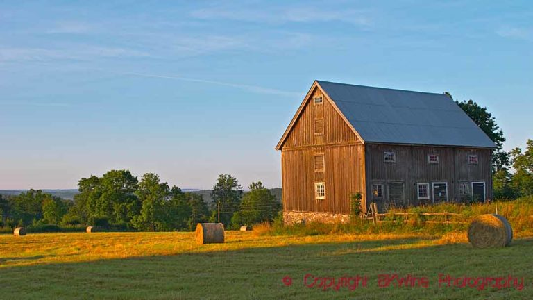 A barn in a field in the Swedish country side early in the morning